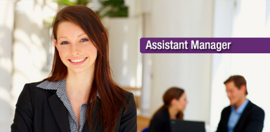 assistant manager job